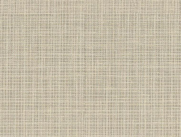 Beige Linen F425 ST10 (Decor)